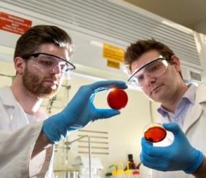 v.l.n.r.: Student Max Worthington und Dr. Justin Chalker von der Universität Flinders | Foto: Flinders University