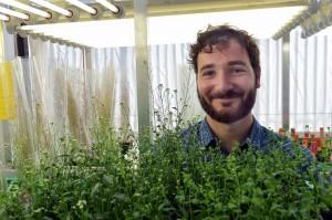 Doktorand Florian Rümpler - Forscher der Uni Jena klären molekulare Ursachen für bakterielle Pflanzenkrankheit auf.