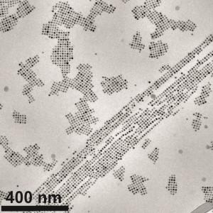 Elektronenmikroskopische Aufnahme kleinster magnetischer Nanopartikel (8 Nanometer), die sich im Magnetfeld spontan zu stabilen Ketten und Flächen angeordnet haben. | Foto: Lehrstuhl Physikalische Chemie I, Universität Bayreuth.