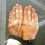 Der Wirkstoff Saltidin von Saltigo wehrt Insekten ab, indem er die Geruchsrezeptoren der Insekten beeinflusst. So ist das Insekt nicht in der Lage, Menschen als Blutspender zu erkennen. Saltidin wird von zahlreichen Herstellern weltweit für die Formulierung von Insektenabwehrmitteln eingesetzt. Er ist nicht hautreizend und hat bereits millionenfach Menschen wirksam geschützt. | Foto: Saltigo GmbH