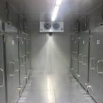 Pharma - Tieftemperatur-Kühlanlage zur Lagerung von Blutplasma | Foto: L&R Kältetechnik